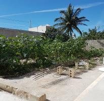 Foto de terreno habitacional en venta en  , telchac puerto, telchac puerto, yucatán, 4526545 No. 01