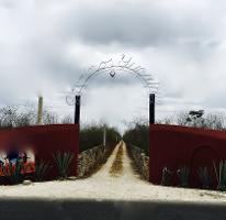 Foto de rancho en venta en  , telchac, telchac pueblo, yucatán, 3230574 No. 01