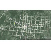 Foto de terreno habitacional en venta en  , temax, temax, yucatán, 2591090 No. 01