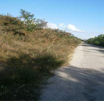 Foto de terreno habitacional en venta en, temozon norte, mérida, yucatán, 1202889 no 01