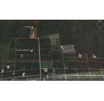 Foto de terreno habitacional en venta en, temozon norte, mérida, yucatán, 1717744 no 01