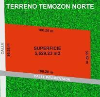 Foto de terreno habitacional en venta en  , temozon norte, mérida, yucatán, 3874007 No. 01