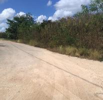 Foto de terreno habitacional en venta en  , temozon norte, mérida, yucatán, 4224677 No. 01
