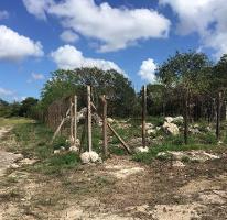 Foto de terreno habitacional en venta en  , temozon norte, mérida, yucatán, 4225850 No. 01