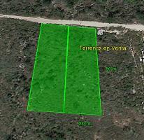 Foto de terreno habitacional en venta en  , temozon norte, mérida, yucatán, 4233105 No. 01
