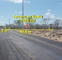 Foto de terreno habitacional en venta en  , temozon, temozón, yucatán, 3337320 No. 01