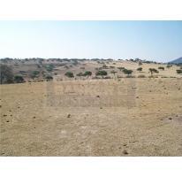 Foto de terreno habitacional en venta en  , tepeji, tepeji del río de ocampo, hidalgo, 2138448 No. 01