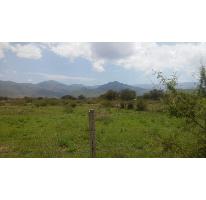 Foto de terreno habitacional en venta en terreno de sembradura , santa maria del tule, santa maría del tule, oaxaca, 976633 No. 02
