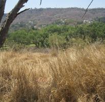 Foto de terreno habitacional con id 317256 en venta en san isidro norte 14 las cañadas no 01