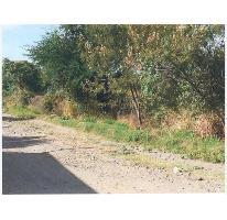 Foto de terreno comercial en venta en  , tetelcingo, cuautla, morelos, 2106498 No. 01