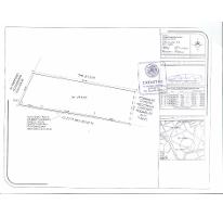 Foto de terreno habitacional en venta en  , tipzen, ciudad valles, san luis potosí, 2605641 No. 01