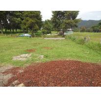 Foto de terreno habitacional en venta en  , tlalnelhuayocan, tlalnelhuayocan, veracruz de ignacio de la llave, 2533060 No. 01