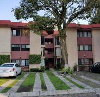 Foto de departamento en venta en  , tlaltenango, cuernavaca, morelos, 3672359 No. 01