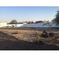 Foto de terreno habitacional en venta en  , tlayacapan, tlayacapan, morelos, 2269274 No. 01