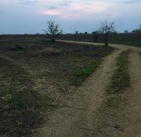Foto de terreno habitacional en venta en  , tlayacapan, tlayacapan, morelos, 2279040 No. 01