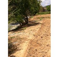Foto de terreno comercial en venta en  , tonatico, tonatico, méxico, 2634346 No. 01