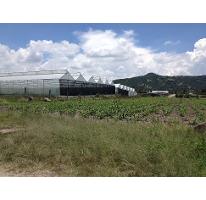 Foto de terreno comercial en venta en  , tonatico, tonatico, méxico, 2637029 No. 01