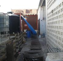 Foto de bodega en venta en  , torreón centro, torreón, coahuila de zaragoza, 2396300 No. 06