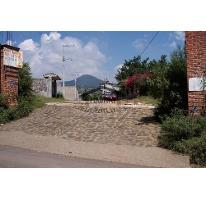 Foto de terreno habitacional en venta en  , totolapan, totolapan, morelos, 2831887 No. 01