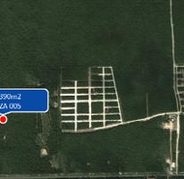 Foto de terreno comercial en venta en  , tulum centro, tulum, quintana roo, 1370993 No. 01