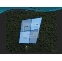 Foto de terreno habitacional en venta en, tulum centro, tulum, quintana roo, 1848574 no 01
