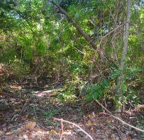 Foto de terreno habitacional en venta en, tulum centro, tulum, quintana roo, 2033732 no 01