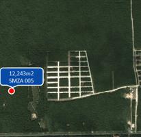 Foto de terreno comercial en venta en  , tulum centro, tulum, quintana roo, 2326900 No. 01
