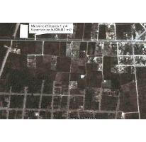 Foto de terreno habitacional en venta en  , tulum centro, tulum, quintana roo, 2448963 No. 01