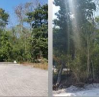 Foto de terreno comercial en venta en  , tulum centro, tulum, quintana roo, 3431255 No. 01