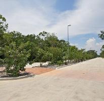 Foto de terreno habitacional en venta en  , tulum centro, tulum, quintana roo, 3728867 No. 01