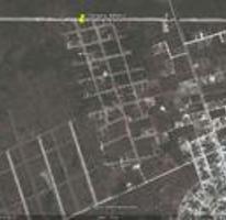 Foto de terreno habitacional en venta en  , tulum centro, tulum, quintana roo, 4033320 No. 01