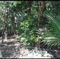 Foto de terreno comercial en venta en  , tulum centro, tulum, quintana roo, 0 No. 01
