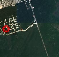 Foto de terreno habitacional en venta en  , tulum centro, tulum, quintana roo, 0 No. 01