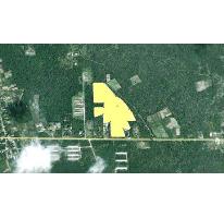 Foto de terreno habitacional en venta en  , ucu, ucú, yucatán, 1046427 No. 01