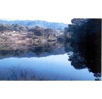 Foto de terreno habitacional en venta en, valle de bravo, valle de bravo, estado de méxico, 1193085 no 01