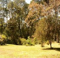Foto de terreno habitacional en venta en  , valle de bravo, valle de bravo, méxico, 1629024 No. 01