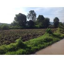 Foto de terreno habitacional en venta en, valle de bravo, valle de bravo, estado de méxico, 1872426 no 01