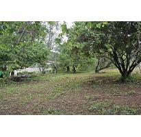 Foto de terreno habitacional en venta en  , valle de bravo, valle de bravo, méxico, 2489793 No. 01