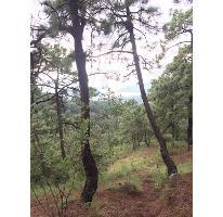 Foto de terreno habitacional en venta en  , valle de bravo, valle de bravo, méxico, 2502536 No. 01