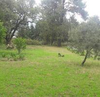 Foto de terreno habitacional en venta en  , valle de bravo, valle de bravo, méxico, 4463461 No. 01