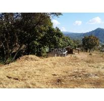 Foto de terreno habitacional en venta en  , valle de bravo, valle de bravo, méxico, 0 No. 03