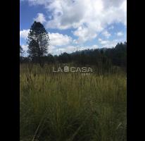 Foto de terreno habitacional en venta en  , valle de bravo, valle de bravo, méxico, 4611339 No. 02