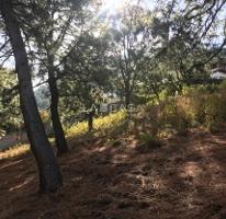 Foto de terreno habitacional en venta en  , valle de bravo, valle de bravo, méxico, 0 No. 04