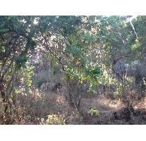 Foto de terreno habitacional en venta en, peña blanca, valle de bravo, estado de méxico, 829477 no 01
