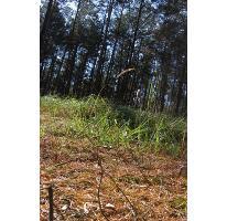 Foto de terreno habitacional en venta en, pinar de osorios, valle de bravo, estado de méxico, 829531 no 01