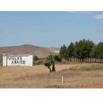 Foto de terreno habitacional en venta en  , valle de las palmas, tecate, baja california, 2632720 No. 01