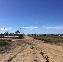 Foto de terreno comercial en venta en  , vicente guerrero, ensenada, baja california, 0 No. 01