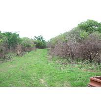 Foto de terreno habitacional en venta en  , villa corona centro, villa corona, jalisco, 2727761 No. 01