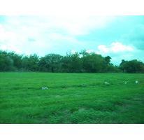Foto de terreno habitacional en venta en  , villa corona centro, villa corona, jalisco, 2735611 No. 01