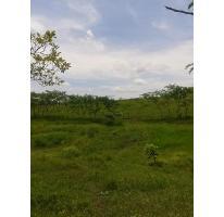 Foto de terreno habitacional en venta en  , villa parrilla, centro, tabasco, 2744030 No. 01